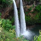 Wailua Falls by Mary Ellen Hurley