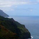 Kalalau trail by Mary Ellen Hurley