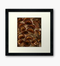 Eye Liner Framed Print
