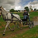 Carriage driving, done well! by moor2sea
