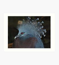 Victoria Crowned Pigeon Art Print
