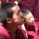 Portrait of a Tibetan Buddhist Monk by Olivia  Gray
