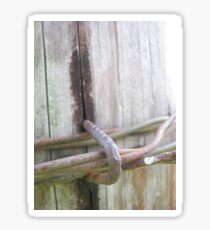 Barbed Wire Fence Post Sticker