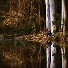 Sanatorium Lake by Peter Hammer