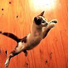 leap of faith by SarahTrangmar