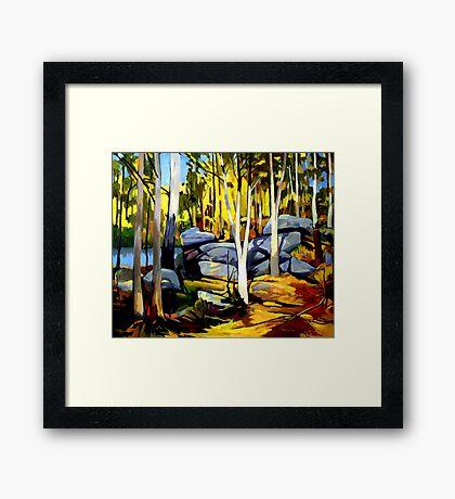 Sunlight and rocks Framed Print