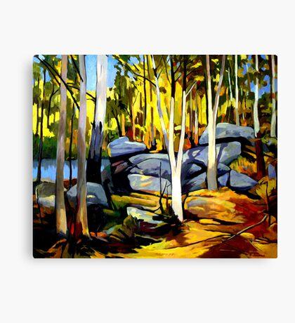 Sunlight and rocks Canvas Print