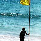 Beach Flag by jlv-