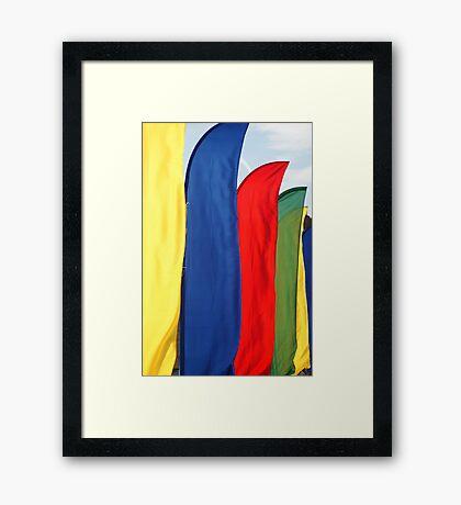 Rally Flags Framed Print