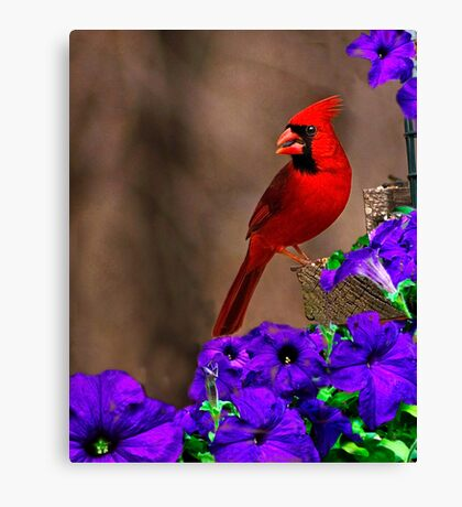 Red and Purple Canvas Print