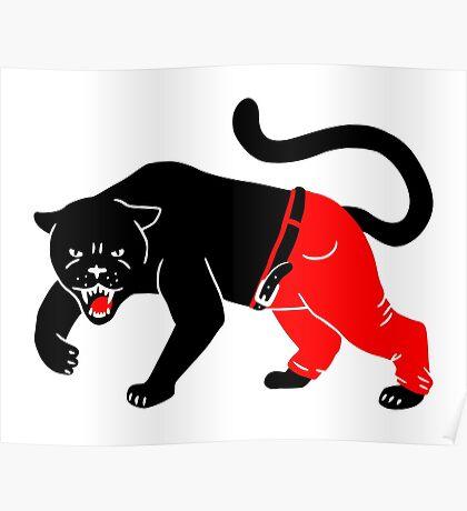 Panther Pants Poster