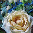 Champagne Roses by David Carton