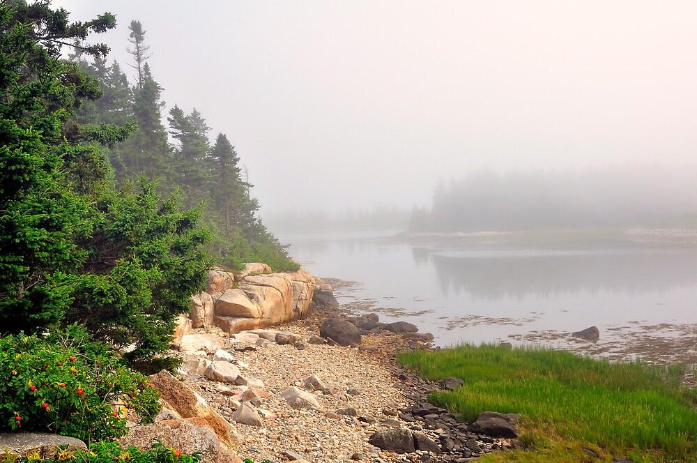 Fog, Schoodic Point, Acadia National Park, Schoodic Peninsula, Maine by fauselr