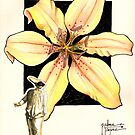 ASIATIC LILY by palma tayona