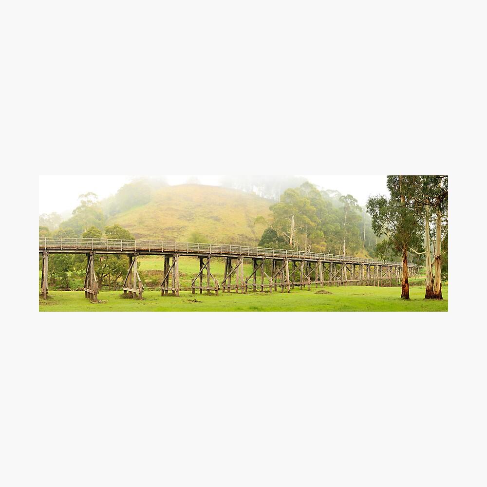 Foggy Trestle Bridge, Timboon, Victoria, Australia Photographic Print