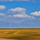 Nebrasky 4 by Tim Wright