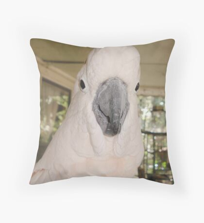 MY LITTLE ANGEL, CASSIE Throw Pillow