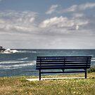 Benched at Long Bay by Jason Ruth
