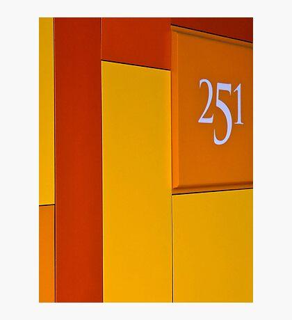 251 Photographic Print
