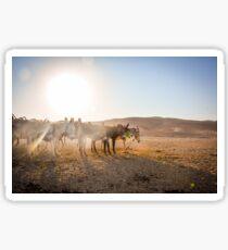 Negev Donkeys Sticker