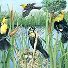 Yellow-Headed Blackbirds by clotheslineart