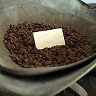Coffee Beans by Barbara Gerstner