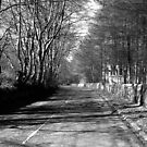 Luss Road by Susan Dailey
