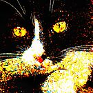Halloween Kitty by teresa731