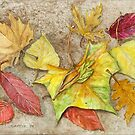 Fall Leafs by clotheslineart