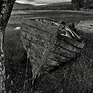 From trees come boats by Ranald