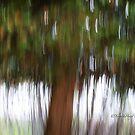 Trees - 29 - Impressions by Yannik Hay