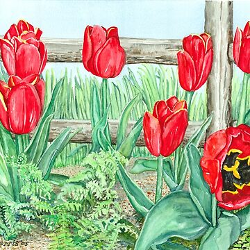 Red Tulips by clotheslineart