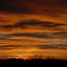 Morning Sky by Larry Hartshorn