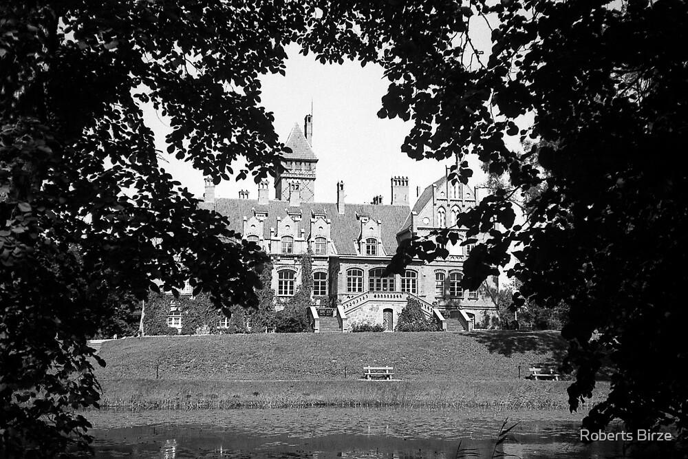 Jaunmoku Pils (ii) | Jaunmoku Palace (ii) by Roberts Birze