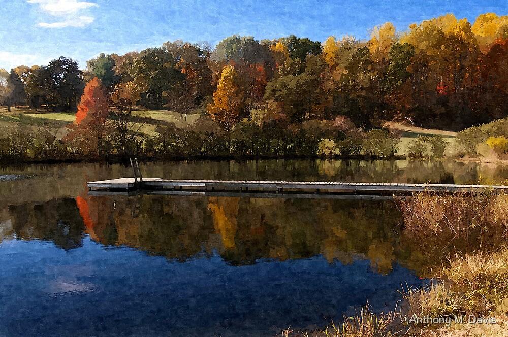Fall Pond by Anthony M. Davis