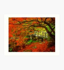Tranquil Maple Art Print