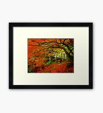 Tranquil Maple Framed Print