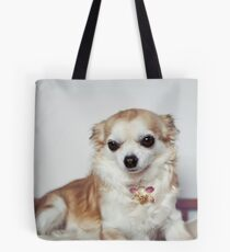 Chihuahua wearing necklace. Tote Bag