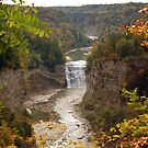 Letchworth by Kim Hart