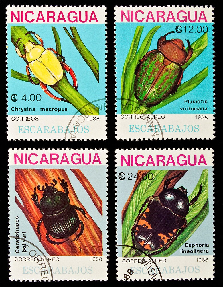 Beetles stamps collection. by FER737NG