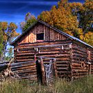 Rustic Little Barn near Clark Colorado by Timothy S Price