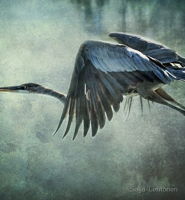 The Great Blue Heron by Saija  Lehtonen