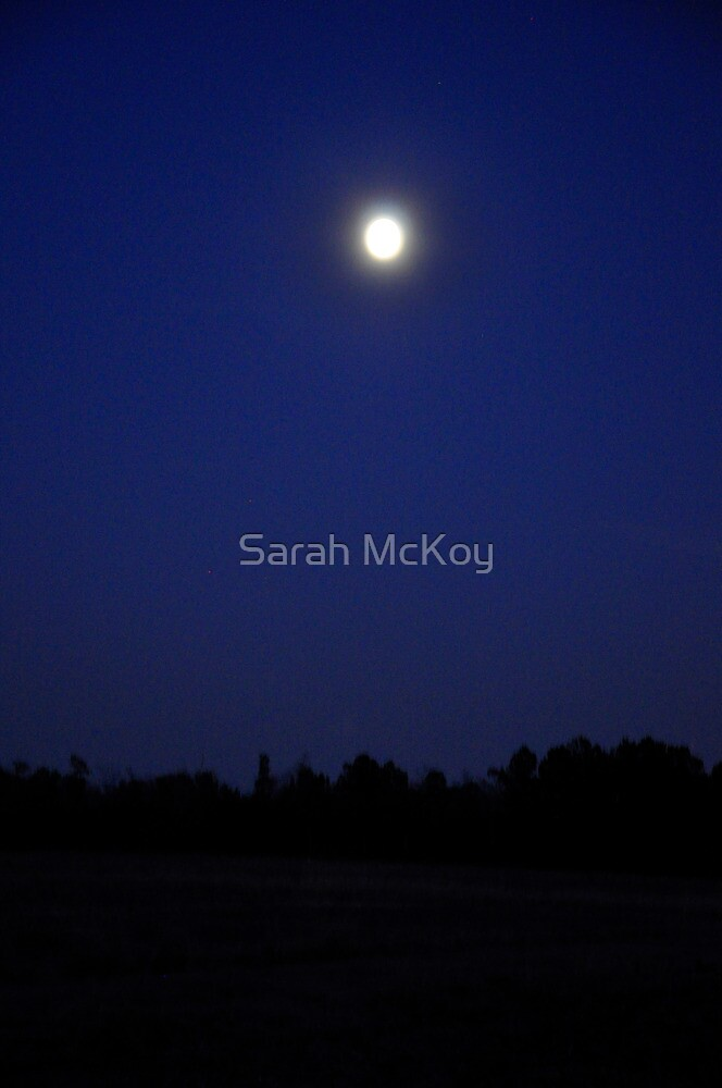 Full Moon Over Field by Sarah McKoy