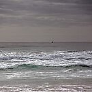 Fingal Breach by tidalcreations