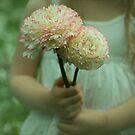 sweet spring flowers by deborah brandon