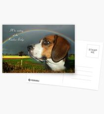 Sympathy Card For Loss Of Pet Postcards