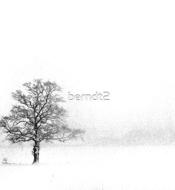 (Near) Whiteout by berndt2