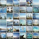 Sydney Montage by Jackie Cooper