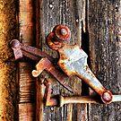 Shutter Detail by jean-louis bouzou