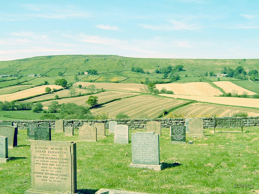 Moorland Resting Place by sweeny